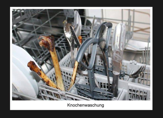 Knochenwaschung (c) Foto von Susanne Haun