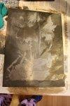 Aquatinta tote Fliege (c) Zinkplatte von Susanne Haun