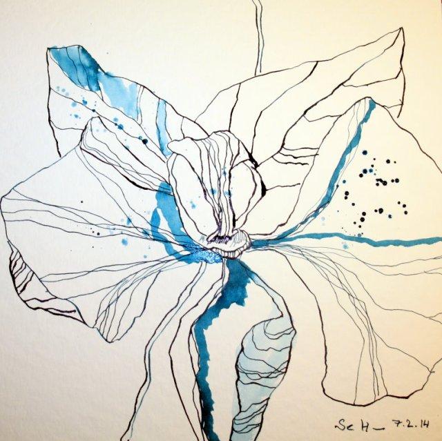 Orchidee in blau Version 1 - 25 x 25 cm - Tusche auf Bütten (c) Zeichnung von Susanne Haun