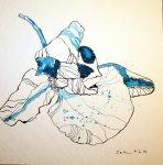 Orchidee in blau Version 2 - 25 x 25 cm - Tusche auf Bütten (c) Zeichnung von Susanne Haun