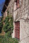 An den Häusern rankt Wein (c) Foto von M.Fanke