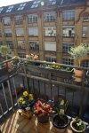 Blick von meinem Balkon (c) Foto von Susanne Haun