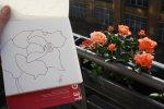 Meine Blumen Modelle (c) Foto von Susanne Haun