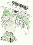 Berliner Blätter 02 2014 - 2 (c) Zeichnungen von J.Küster und 0019