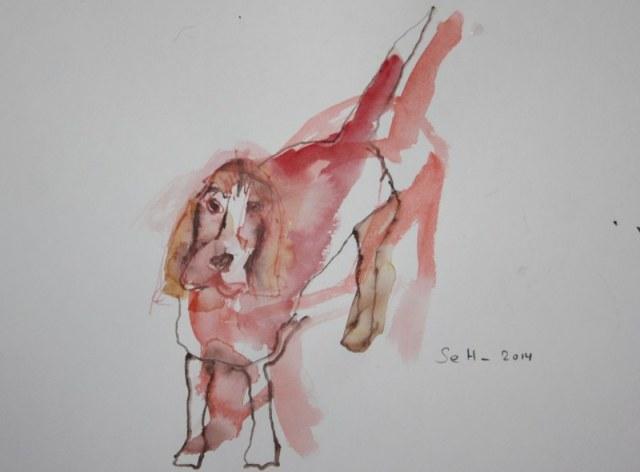 Beagle Paula - Version 1 -  30 x 40 cm - Aquarell und Pastell auf Hahnemühle Papier (c) Zeichnung von Susanne Haun