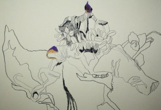 Verblühte Anemone (Ausschnitt) (c) Zeichnung von Susanne Haun