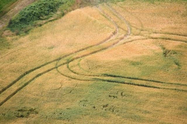 Feldspuren - Zeichnung in der Landschaft (c) Foto von Susanne Haun
