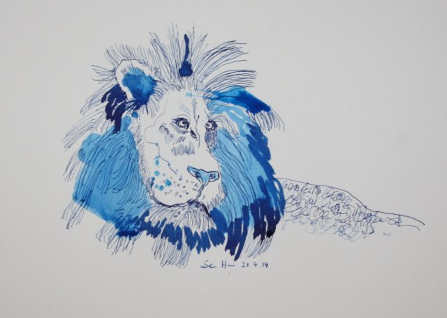 Der Löwe nach der Klausur - Tusche auf Bütten - 23 x 31 cm (c) Zeichnung von Susanne Haun Blog