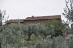 Das Geburtshaus von Leonardo da Vinci sieht unspektakulär aus (c) Foto von M.Fanke