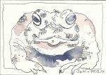 Kröte Vers. 3 (c) Zeichnung von Susanne Haun