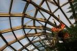 Gewächshaus im Botanischer Garten (c) Foto von M.Fanke
