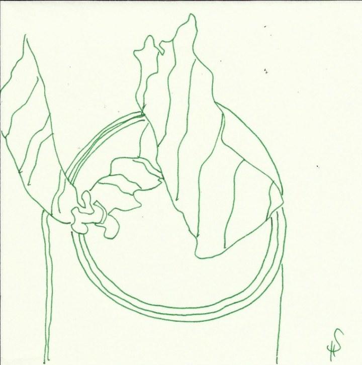 Zerknülltes Papier (c) Zeichnung von Susanne Haun