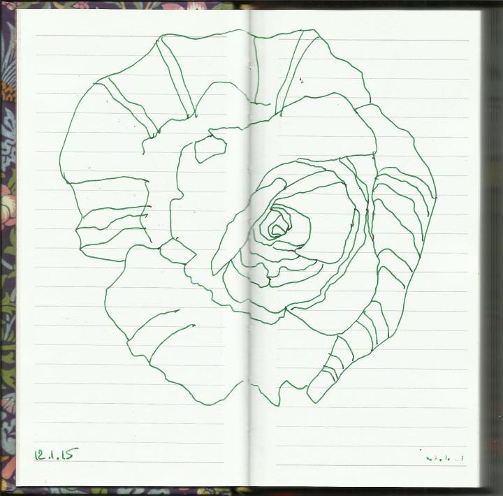 Rosenknospe Vers. 1 (c) Zeichnung von Susanne Haun