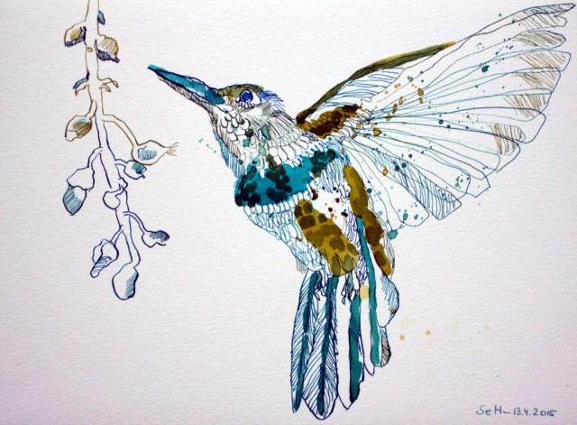 Kolibri - Tusche auf Hahnemühle - Bütten - 23 x 31 cm (c) Zeichnung von Susanne Haun