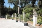 Park der Villa Borghese (c) Foto von Susanne Haun