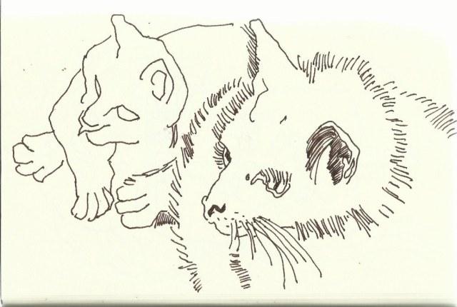 Katze (c) Zeichnung von Susanne Haun