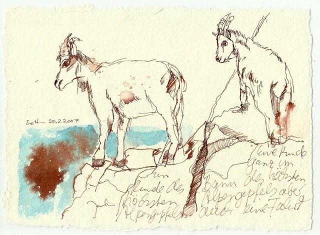 Ziegen (c) Zeichnung von Susanne Haun