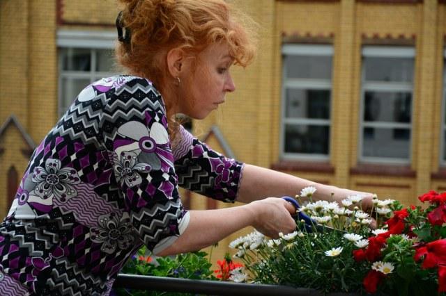 Blumenpflege (c) Foto von M.Fanke