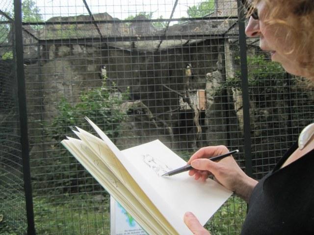 Susanne Haun malt Eulen im Zoo (c) Foto von Tanja Maciejewski
