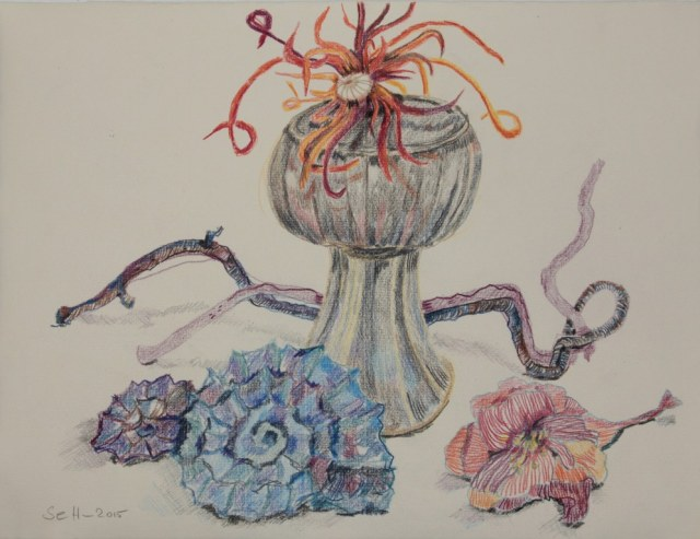 Natur Stillleben mit Buntstiften auf Hahnemühle Antik Ingres (c) Zeichnung von Susanne Haun