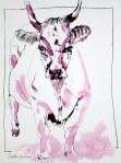 Kuh - 30 x 40 cm - Tusche auf Bütten (c) Zeichnung von Susanne Haun