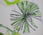 Vor unserer Zeit (c) Entstehung Zeichnung auf Leinwand von Susanne Haun