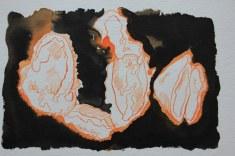Kürbiskerne - 11 x 18 cm - Tusche auf Hahnemühle Burgund (c) Zeichnung von Susanne Haun