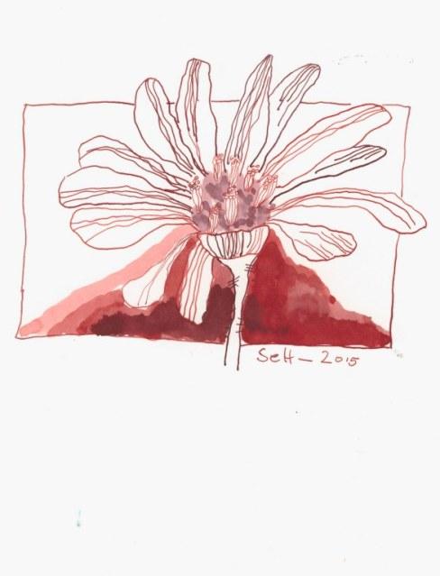 Florales (c) Zeichnung von Susanne Haun