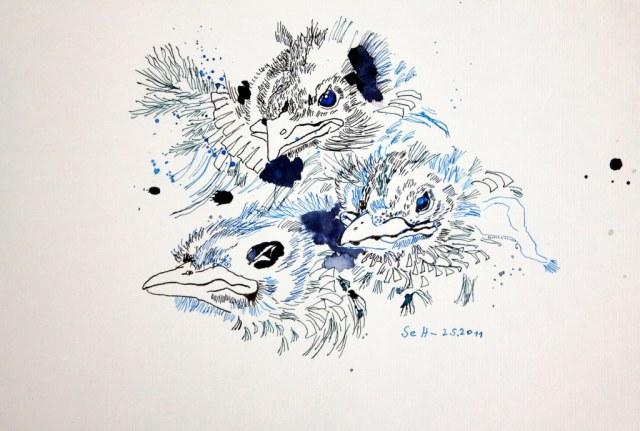 Drei Amseln zwitschern von den Dächern (c) Zeichnung von Susanne Haun