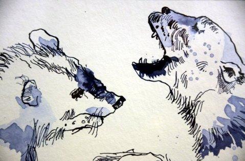 Naturgewalt Arktis - Der Eisbär (c) Ausschnitt Zeichnung von Susanne Haun