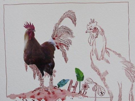 Hahn für die Kleinsten (c) Collage von Susanne Haun