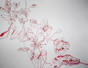 Phytonschlange (c) Zeichnung von Susanne Haun