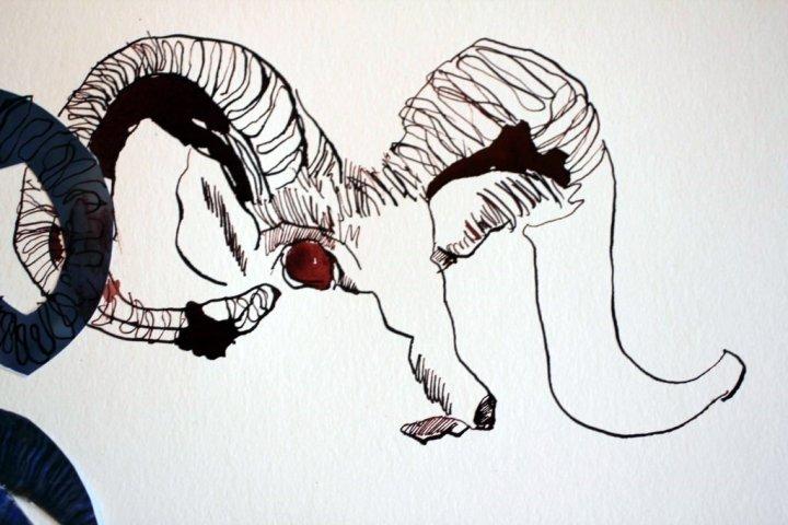 Sehgewohnheiten der Kleinsten - Widder (c) Collage von Susanne Haun