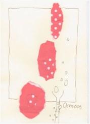 #43.1 Null Osmose (c) Zeichnung von Susanne Haun(2)