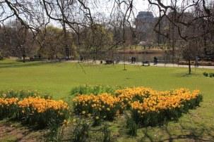 Im St. James Park (c) Foto von Susanne Haun