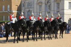 Horse Guard (c) Foto von Susanne Haun