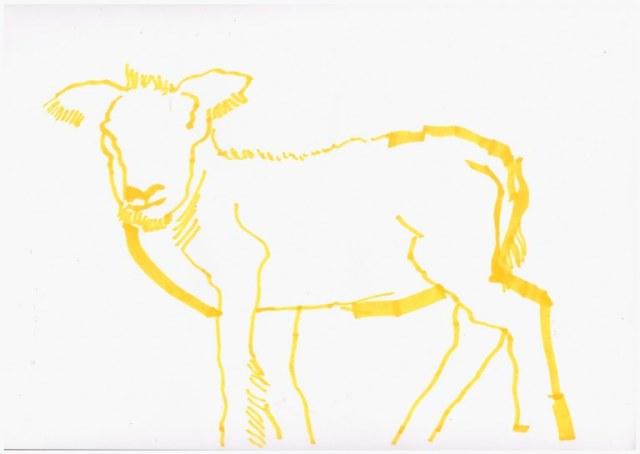 1. Schritt - Entstehung eines Lamm (c) Zeichnung von Susanne Haun