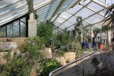 Kew Garden - Princess of Wales Conservatory (c) Foto von Susanne Haun
