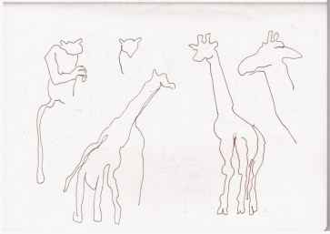 Giraffe (c) Zeichnung von Susanne Haun