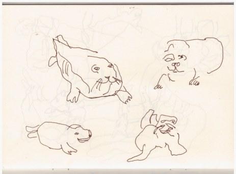 Skizzenbuch - Horsey - Seehunde am Strand (c) Zeichnung von Susanne Haun