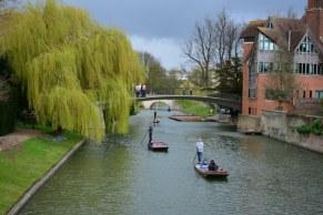 Steckkahnfahren in Cambridge (c) Foto von M.Fanke