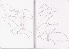 Flugstudie Fledermaus (c) Zeichnung von Susanne Haun