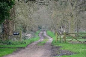 Der Weg nach Heydon Hall, Norfolk England (c) Foto von M.Fanke
