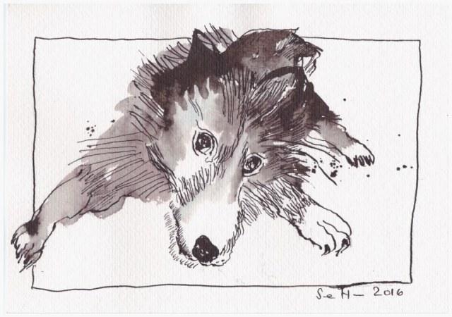 Der junge Leopold - 17 x 22 cm - Tusche auf Bütten (c) Zeichnung von Susanne Haun