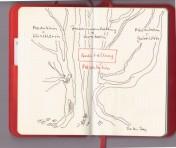 Diary Flex mit meinem Ausstellungsbaum (c) Zeichnung von Susanne Haun