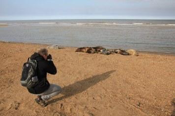 M.Fanke beim Seehunde fotografieren in Horsey Seals (c) Foto von Susanne Haun