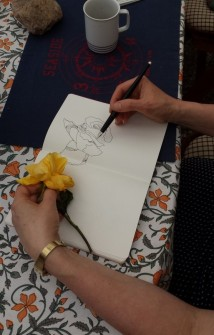 Rosen zeichnen (c) Foto von M.Fanke
