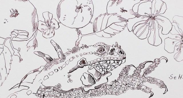 Chamäleon - Ausschnitt aus Das Urteil des Paris - Version 2 (c) Zeichnung von Susanne Haun