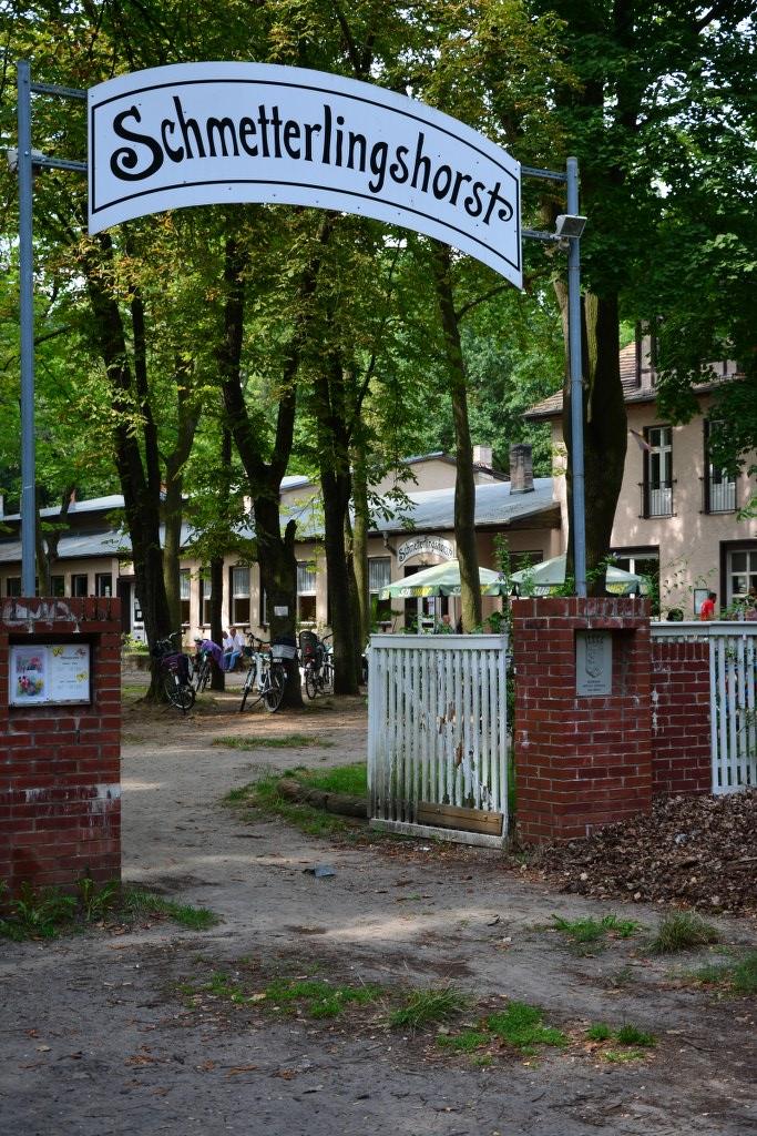 Die Anfahrt zum Schmetterlingshort ist lang (c) Foto von M.Fanke
