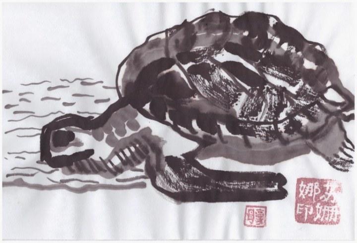 Schildkröte (c) Zeichnung von Susanne Haun